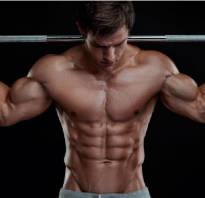 Какие упражнения качают какие мышцы
