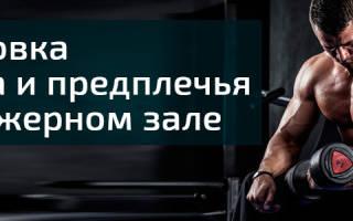 Упражнение в зале на бицепс