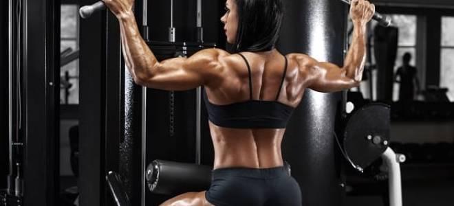 Мышцы спины и упражнения для них