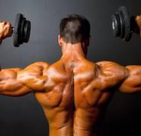 Упражнения в спортзале на плечи