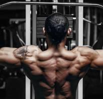 Топ упражнений на спину