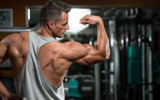 Упражнения в зале на плечи