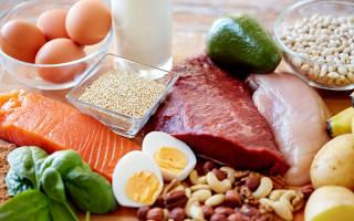 Вред белковой диеты для организма