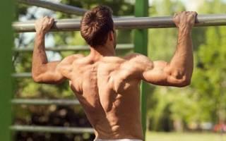 Какие упражнения нужно делать чтобы научиться подтягиваться