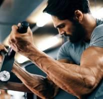 Сколько упражнений делать на бицепс