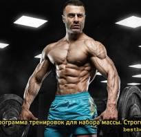 Программа базовых упражнений для набора мышечной массы