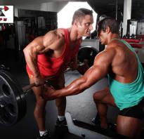 Упражнения для длинных мышц спины