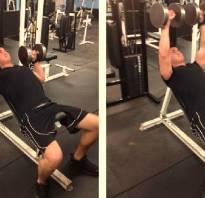 Базовые упражнения для всех групп мышц