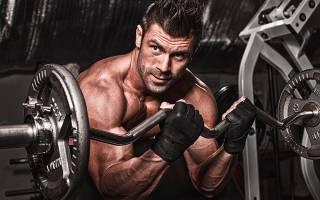 Основные виды и формы физических упражнений
