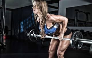 Силовой тренинг женщин базовые упражнения