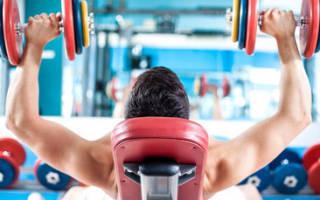 Упражнения для бодибилдинга для начинающих