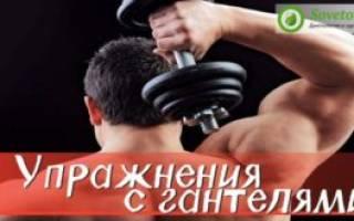 Самые эффективные упражнения на трицепс