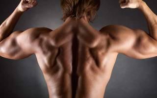 Упражнения для глубоких мышц спины