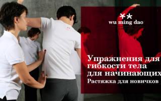 Упражнения для гибкости тела для начинающих