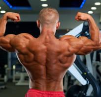 Упражнения в тренажерном зале для мышц спины
