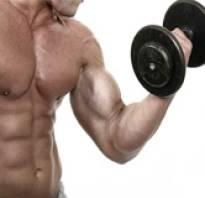 Изолирующие упражнения на бицепс